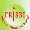 Frisbi